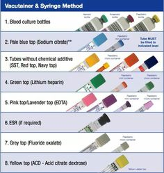 free printable phlebotomy study guide