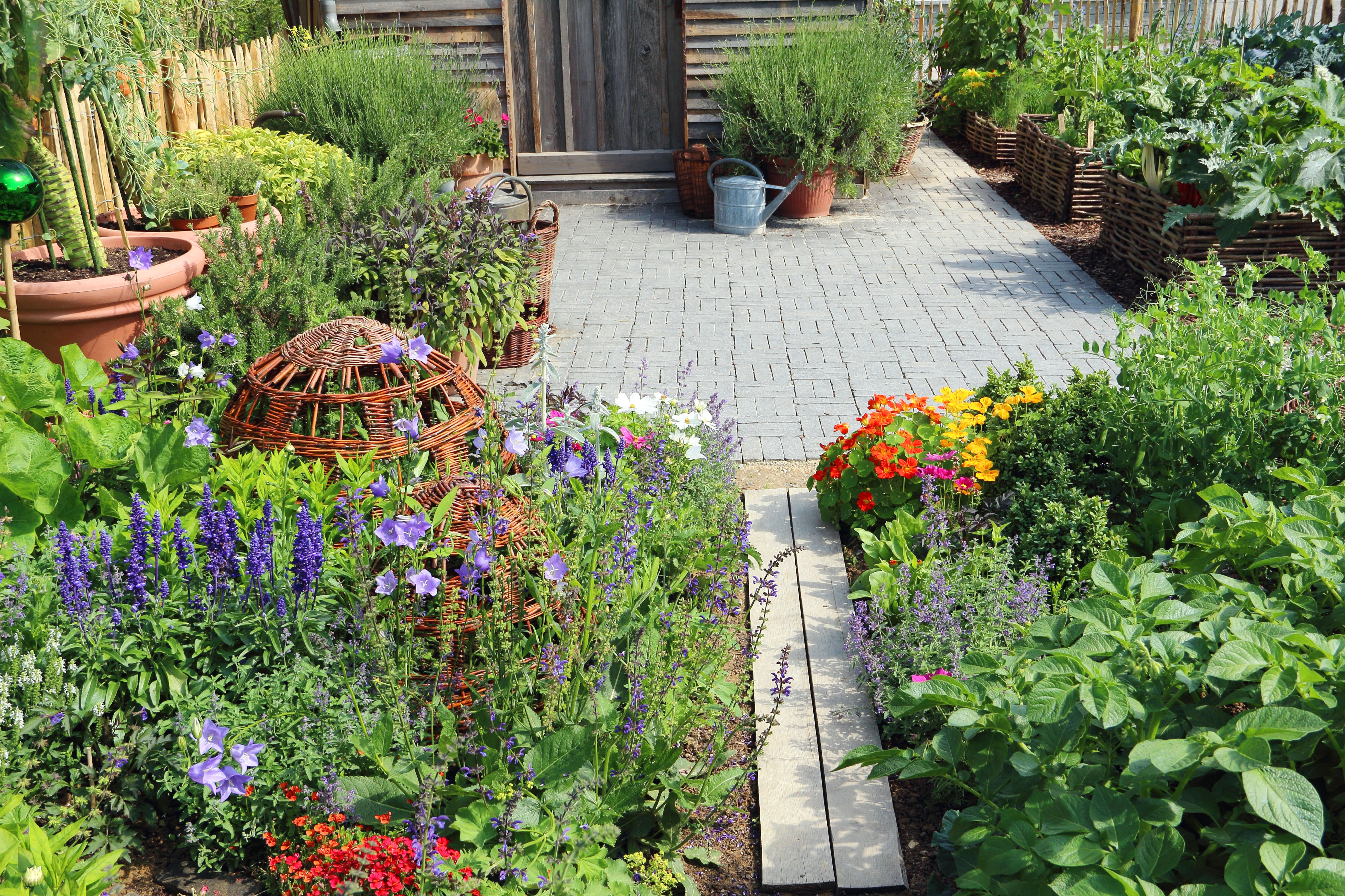 almanac planting guide for 2018