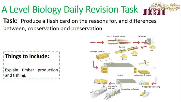a level biology revision guide