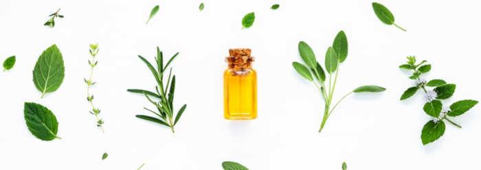ma bible des huiles essentielles guide complet d aromatherapie