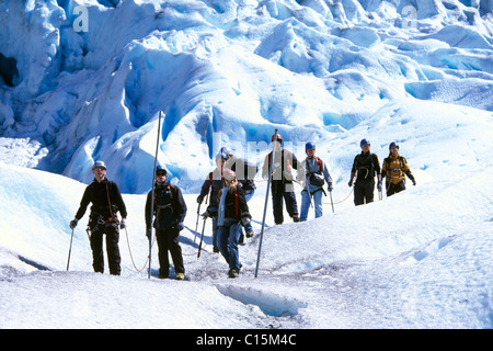 glacier guides booking hut in skaftafell national park