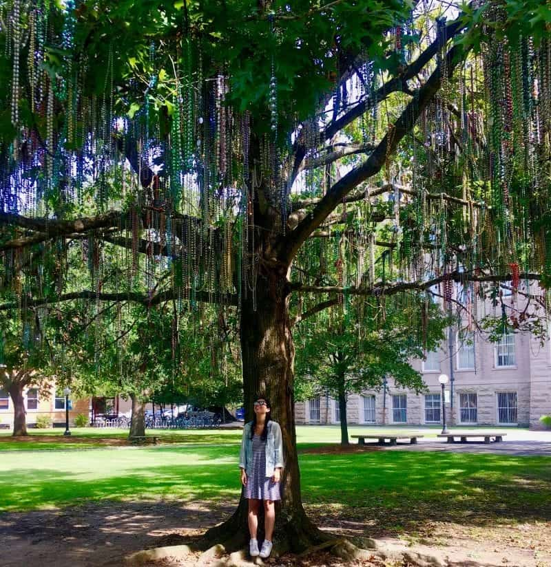 locals guide to new orleans