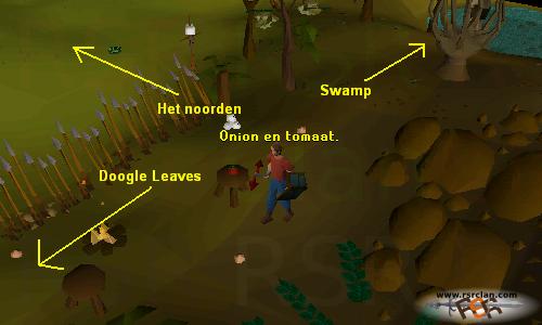 big chompy bird hunting guide