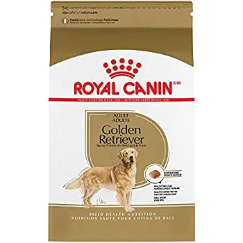 royal canin chihuahua feeding guide