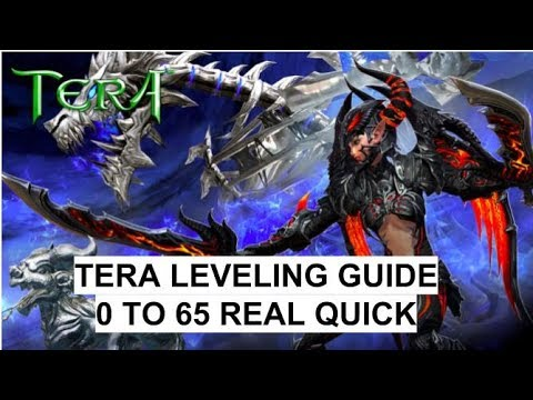 tera leveling guide 60 65