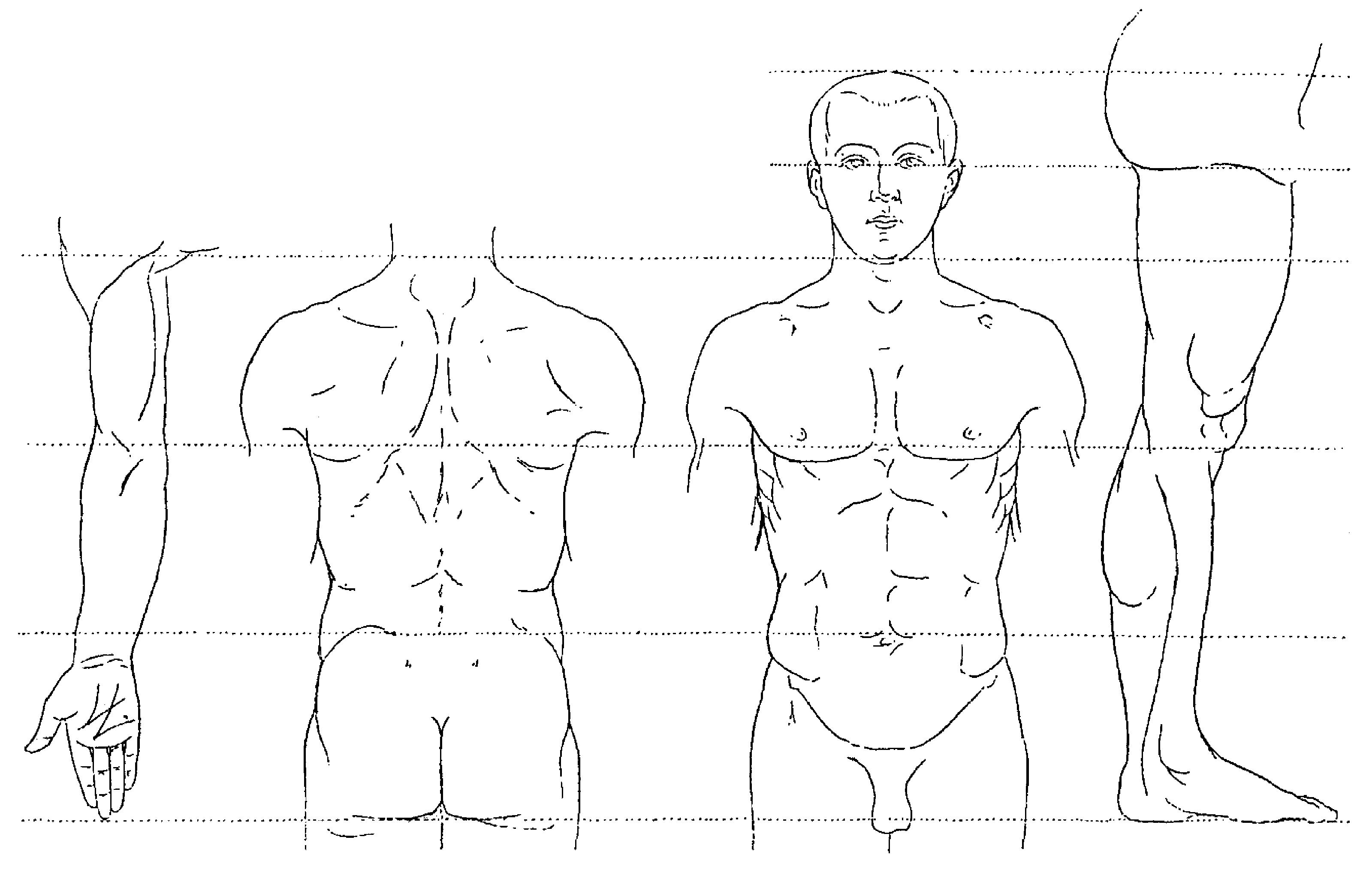 guide des mouvements de musculation delavier pdf