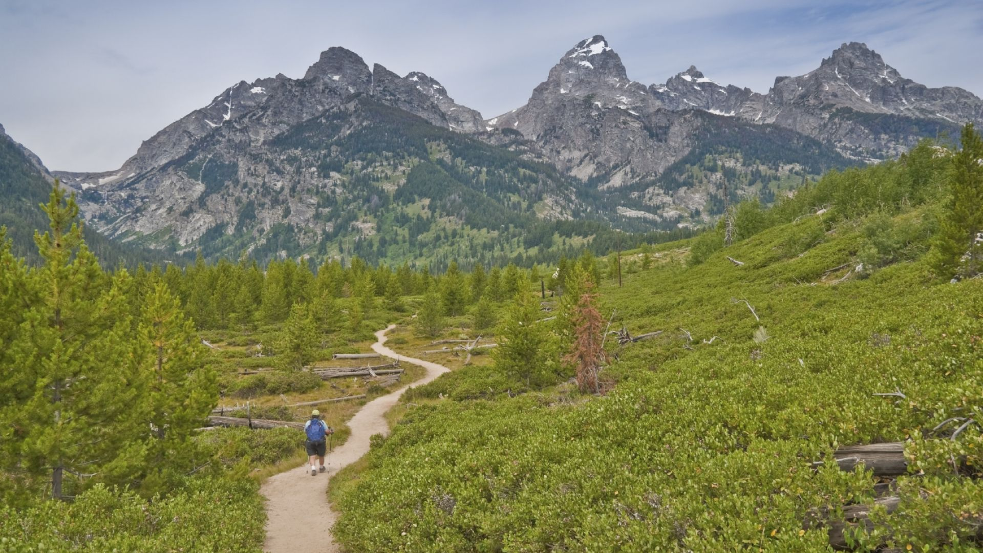 yellowstone national park guided hiking tours