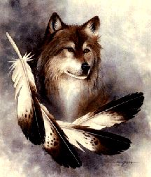 american indian animal spirit guides