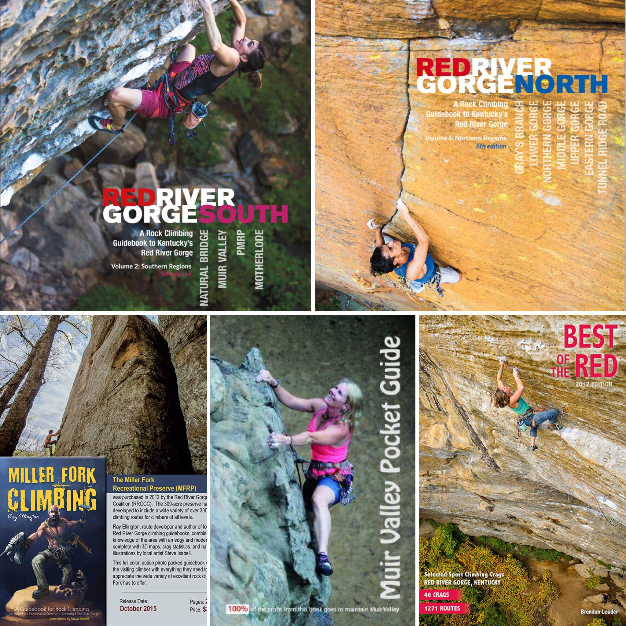 red river gorge climbing guide book