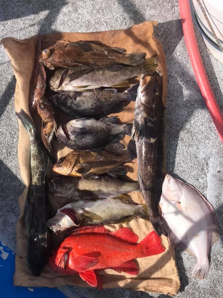 lower red lake fishing guide