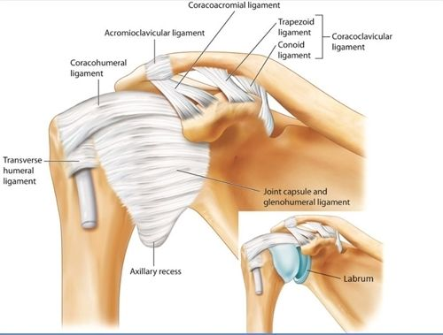 ultrasound guided cortisone injection shoulder cost