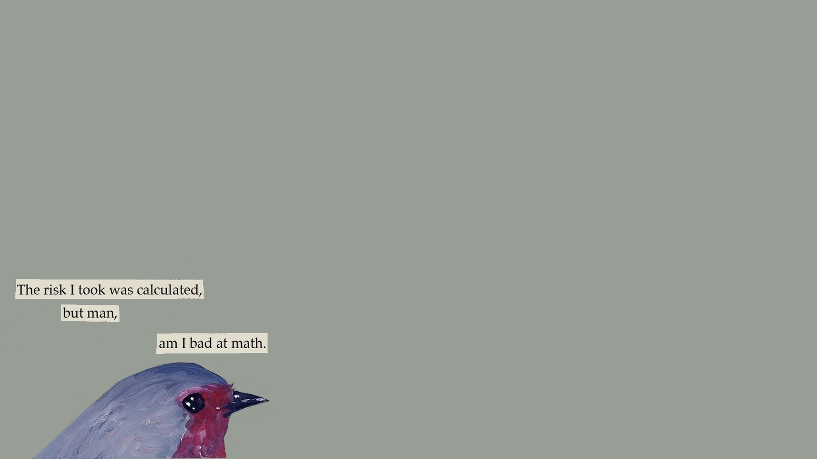 a guide to troubled birds