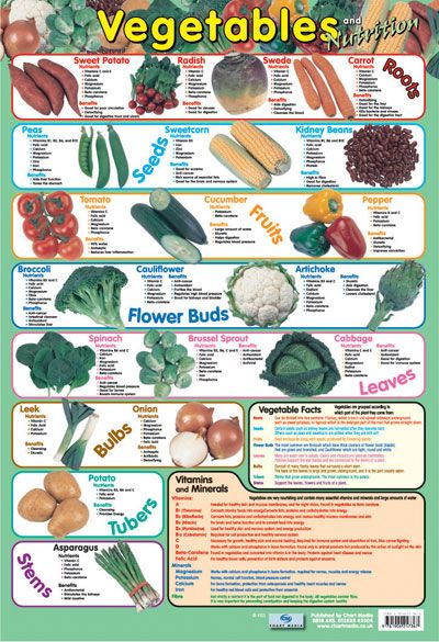 food and nutrition study guide