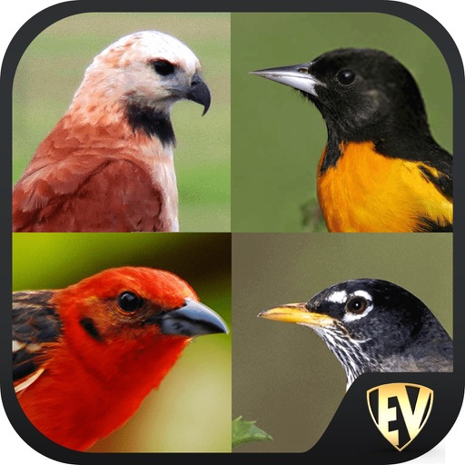 best bird guide app for iphone
