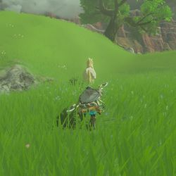 breath of the wild side quests guide