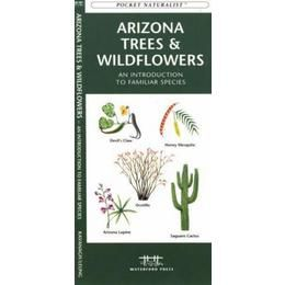 cactus of arizona field guide