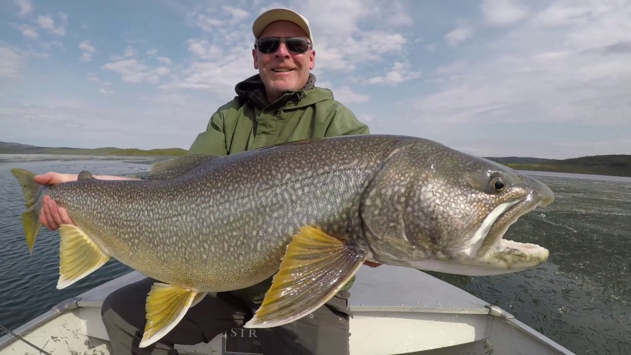 lake trout ice fishing guides