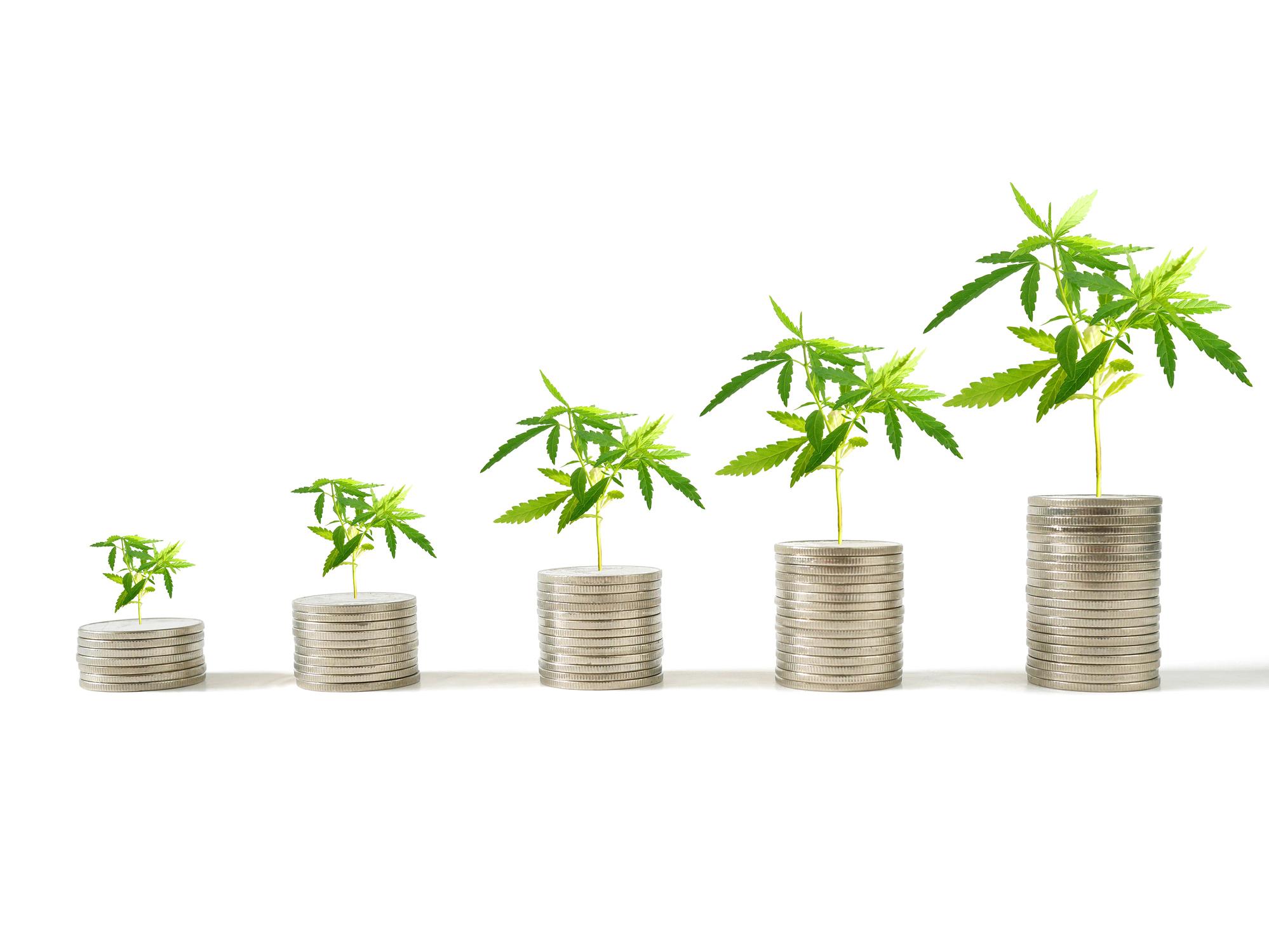 warren buffett guide to retirement investing