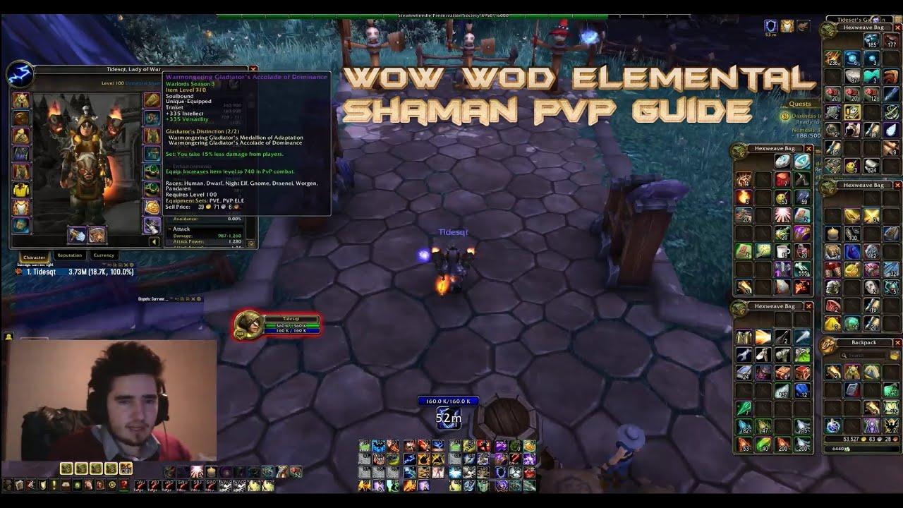 2.4 3 elemental shaman guide pvp