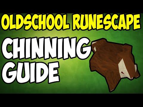 old school runescape money making guide