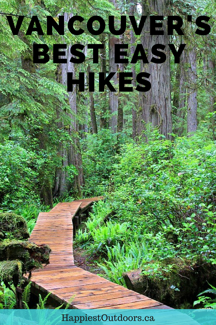 hiking guide to the big trees of southwestern british columbia
