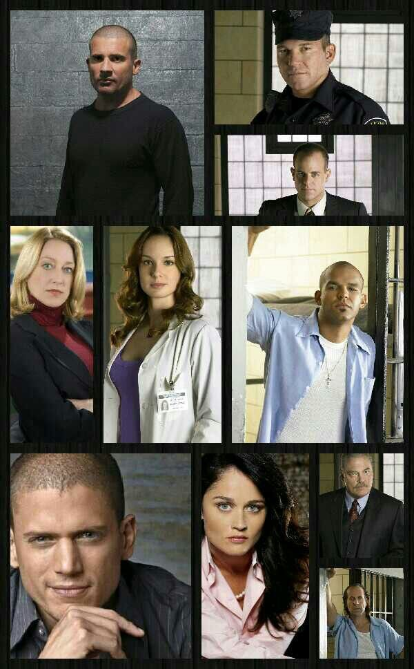prison break season 5 tv guide
