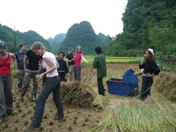 prix d un guide au vietnam