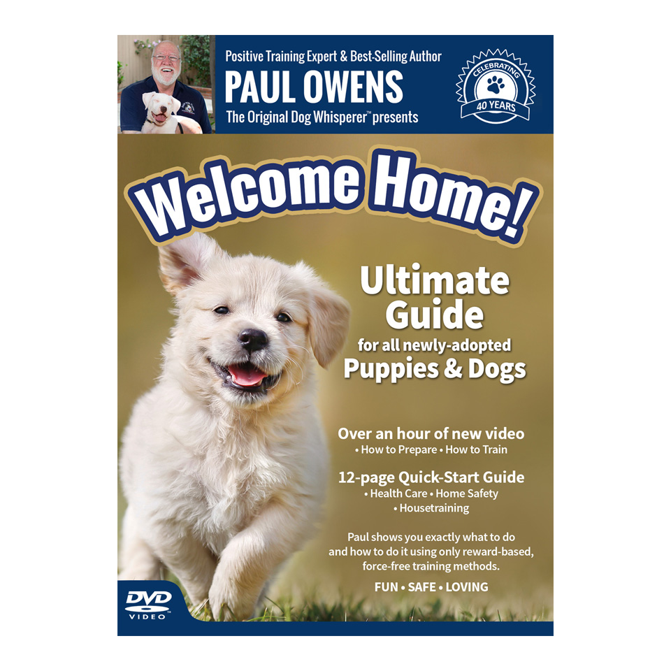puppy training guide by age