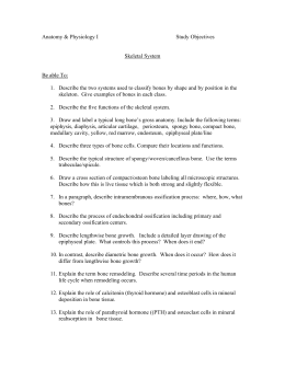 the pigman study guide chapters 1 5